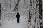 It feels like Narnia